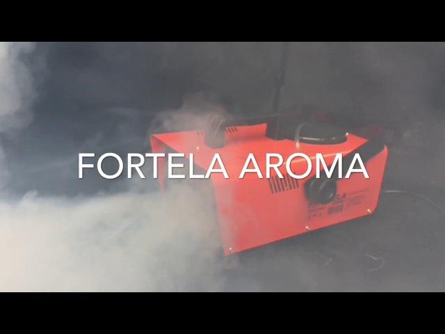 Сухой туман Fortela Aroma для удаления запахов и ароматизации