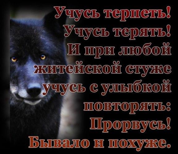 Фото №456257117 со страницы Максима Блидаря