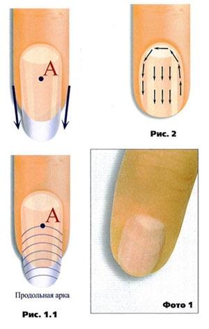 Моделирование овальной формы ногтей, изображение №3