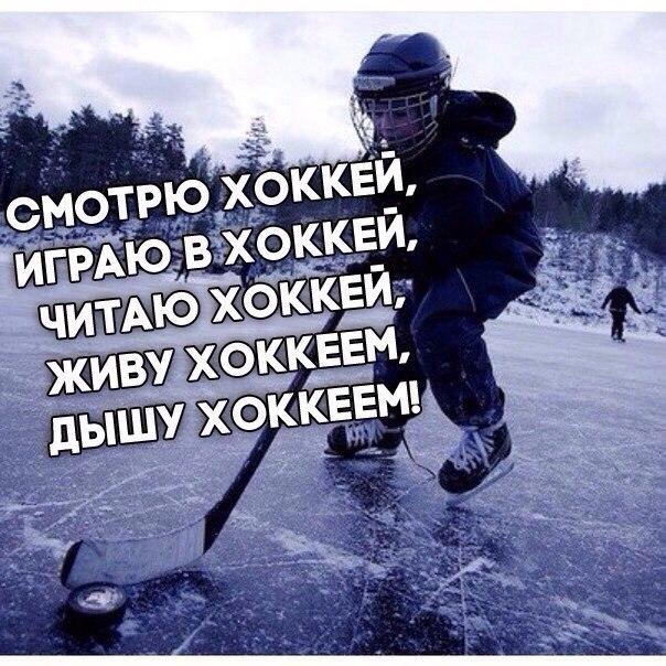 самой картинки живи хоккеем реализации задачи