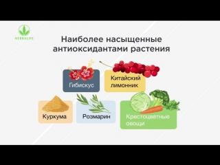 Антиоксиданты-природные источники молодости