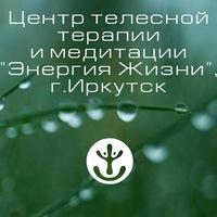 """Логотип """"ЭНЕРГИЯ ЖИЗНИ"""" Иркутск,Центр телесной терапии"""