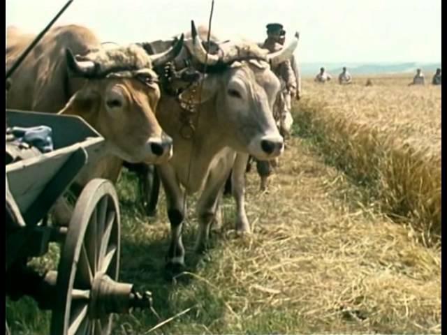 Похождение бравого солдата Швейка 11 серия ФРГ Австрия 1972