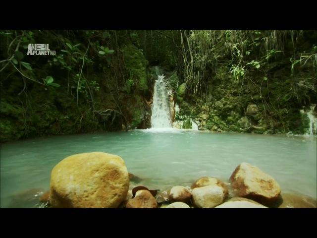 Неизведанные острова - Карибы (Caribbean)