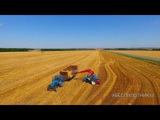 Сбор урожая в Липецкой области засняли с беспилотника