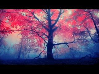 Fuluf - Divine Intervention 008 - Freyja (Psychill,Psybient,Downtempo)