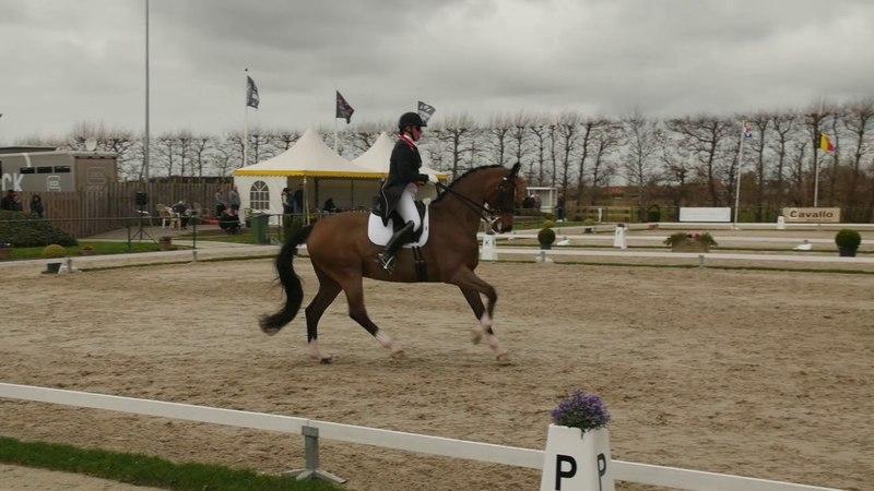 Fiona BIGWOOD GBR Grand Prix CDI Zeeland 2018 KJAERHOLM'S ABUTSIAQ