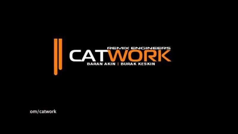 Catwork Remix Engineers Insomnia