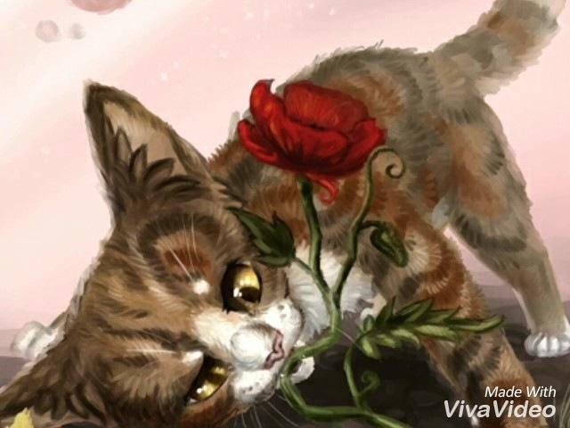 Коты Воители Огнезвёзд и Пестролистая