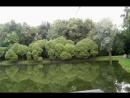 Нарышкинский пруд в парке Фили