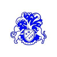 Логотип Бизнес Молодость в Казани