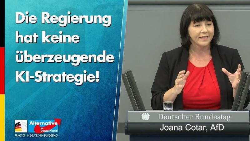 Die Regierung hat keine überzeugende KI Strategie Joana Cotar AfD Fraktion im Bundestag