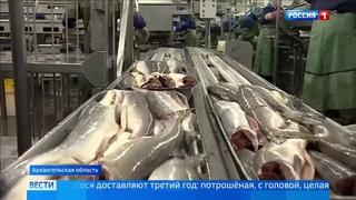 Рекордная путина позволит снизить цены на лососевые