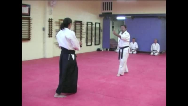 Aikido Yoshinkan Mori Shihan Jiyu waza Demo