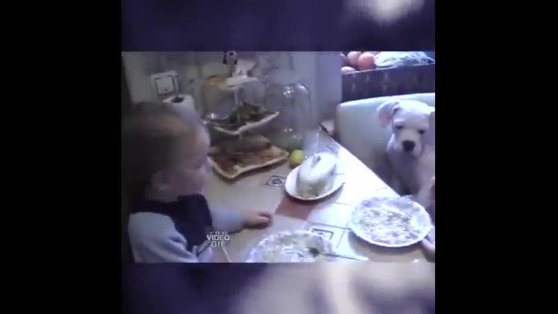 Гениальный способ накормить ребенка! 👍
