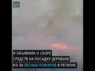 Авиакомпания S7 будет возрождать Сибирь