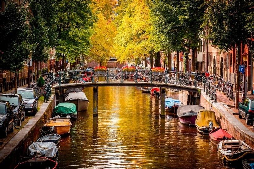 Страны мира — Нидерланды, изображение №1
