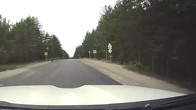 ТОП-6 смертельных ловушек для пешеходов. Как не погибнуть на наших дорогах (1)