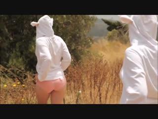 Танцующие овечки (см. до конца)