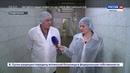Молочную продукцию Крыма оценили по достоинству в Москве