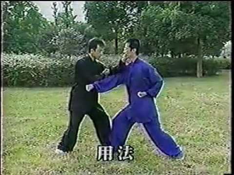 形意拳真髓王树金 (The Essence of Xingyi Quan Wang Jin)