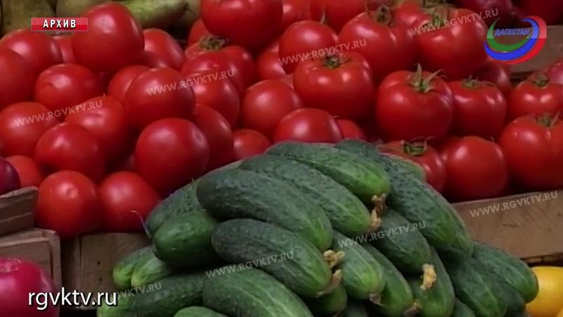 В Дагестане выросло производство сельхозпродукции
