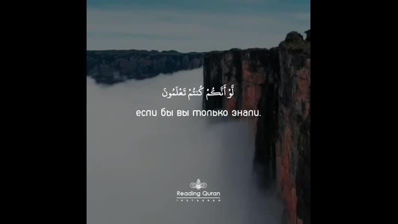 Сура 23 Верующие аяты 112 116 Чтец Идрис Абкар