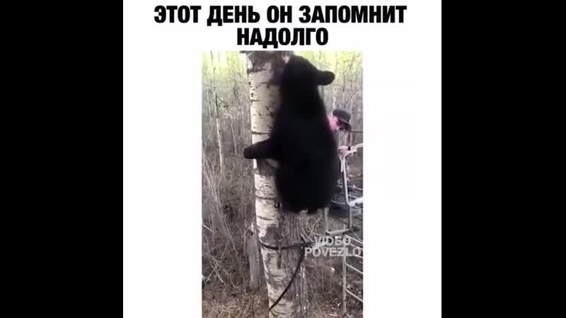Медведь. Группа Выжить Любой Ценой