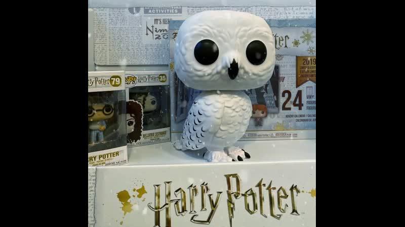 Букля — полярная (белая) почтовая сова, принадлежащая Гарри Поттеру. ⠀ Буклю купил для Гарри Рубеус Хагрид 31 июля 1991 года как