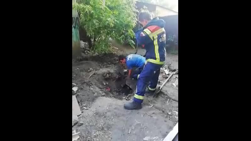 Спасение собаки из ямы