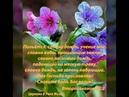 Причастники Божеского Естества. Иоанна 10.27. ( часть 21 ). 30.05.2018.