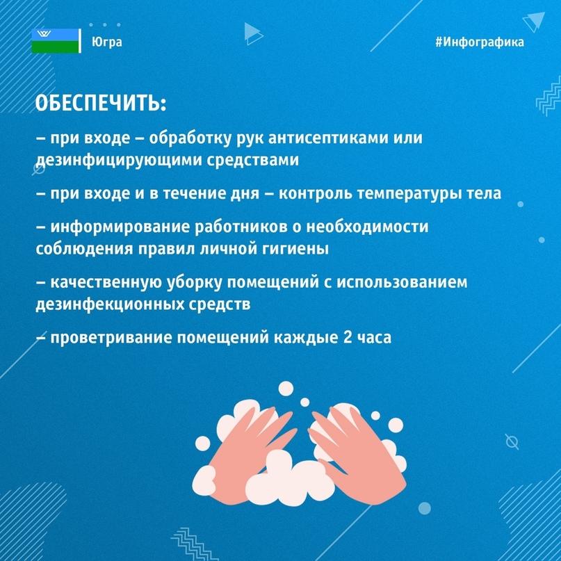 Коронавирус. Ответы на главные вопросы, изображение №4