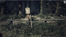 Blair witch on Linux repack 2K wine