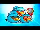 Angry Birds Figh Открыли Синюю Троицу и Выиграли лабораторию свина Продолжение следует