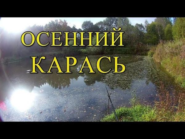 Осенний Карась Мотыль,Опарыш,Червь Рыбалка с Сергеем ЗУ