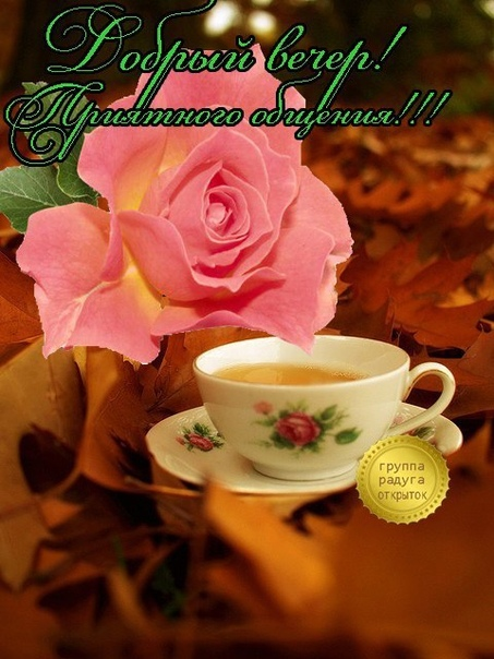 радуга открыток добрый вечер доброе утро добрый день может