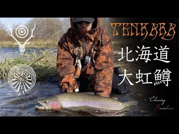 TENKARA SESSION 15 テンカラ セッション 北海道 秋の大虹鱒を追って