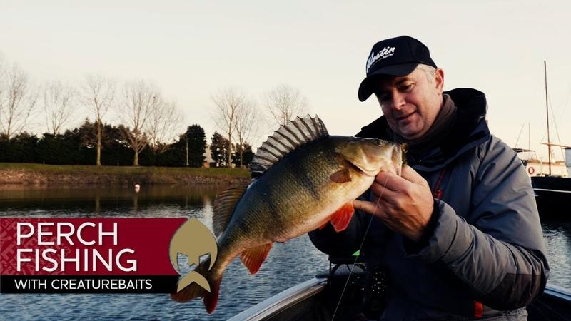 Perch Fishing with Creaturebaits Westin Fishing