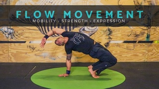 LEARN TO FLOW Movement Class for Mobility Strength [Yoga / Primal Movement / Animal Flow]