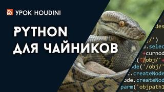 """Урок Houdini """"Python для чайников"""" (RUS)"""