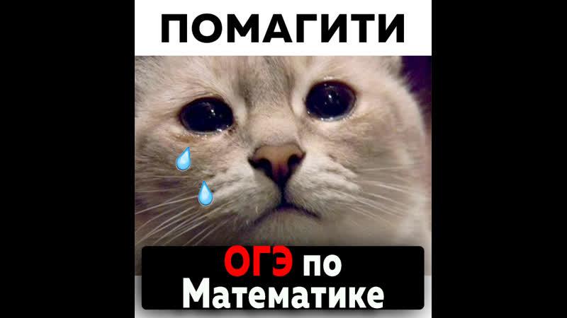 ОГЭ по МАТЕМАТИКе с Максом Талаевым