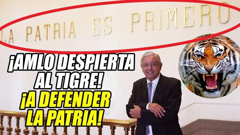 ¡AMLO despierta al TIGRE para impedir un Golpe y que EU invada México