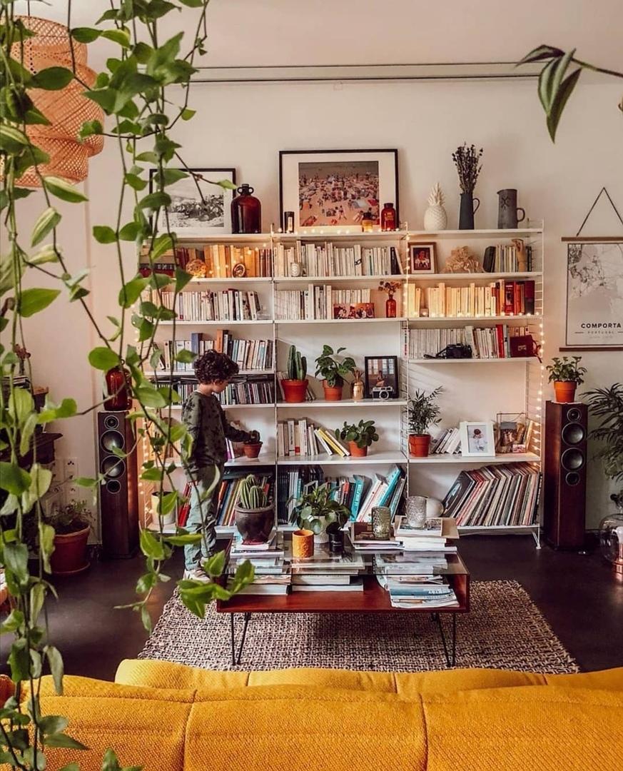 Растения как элемент декора жилого пространства