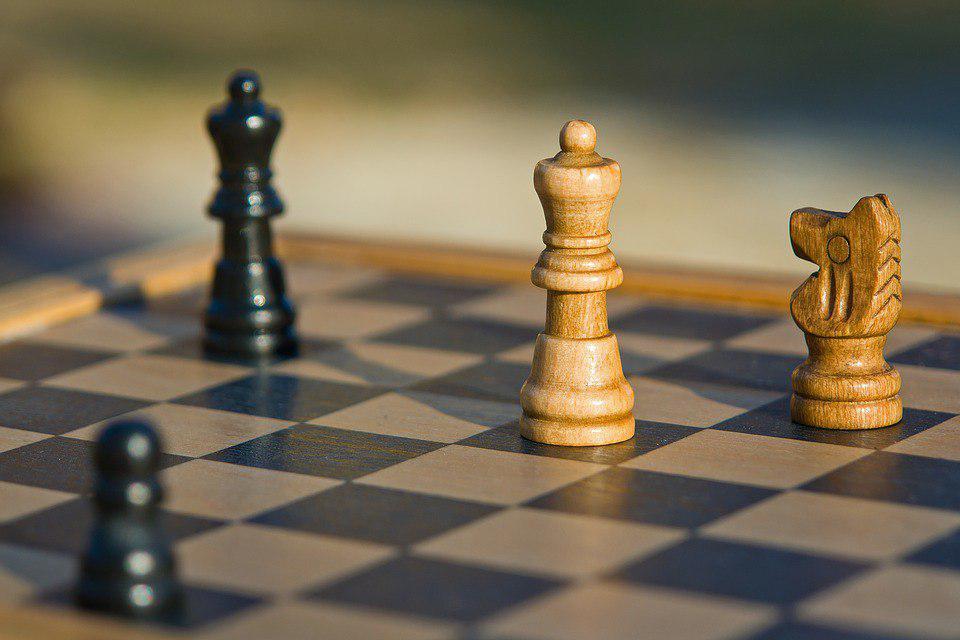 Кубок мира по решению шахматных композиций выиграл школьник из Выхина-Жулебина