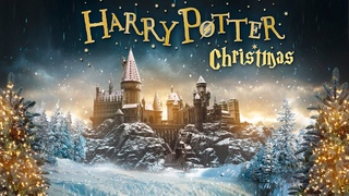 8 Hours Harry Potter Christmas 🎄 ASMR Ambience ⋄ Hogwarts, The burrow and More 🎁✨ Cozy Winter Scenes