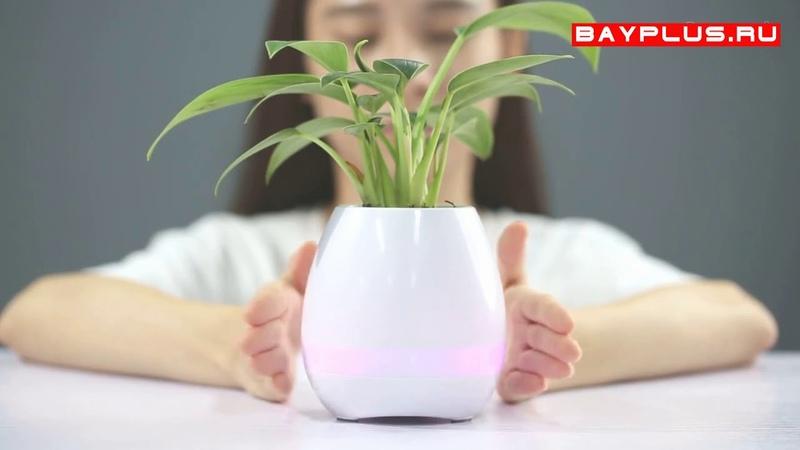 Умный музыкальный горшок для растений smart flowerpot