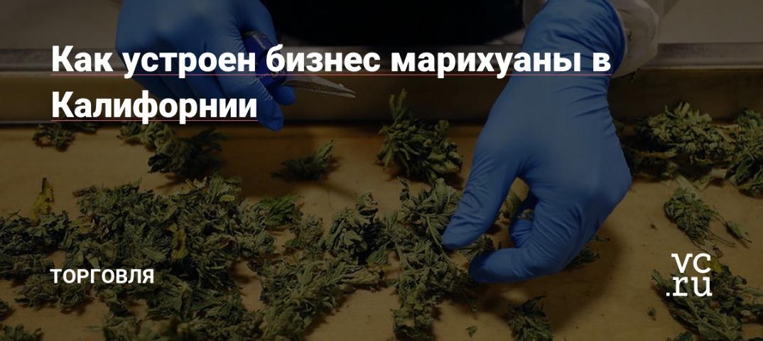 Обколются своей марихуаны и ебутся в жопы конопля онлайн видео