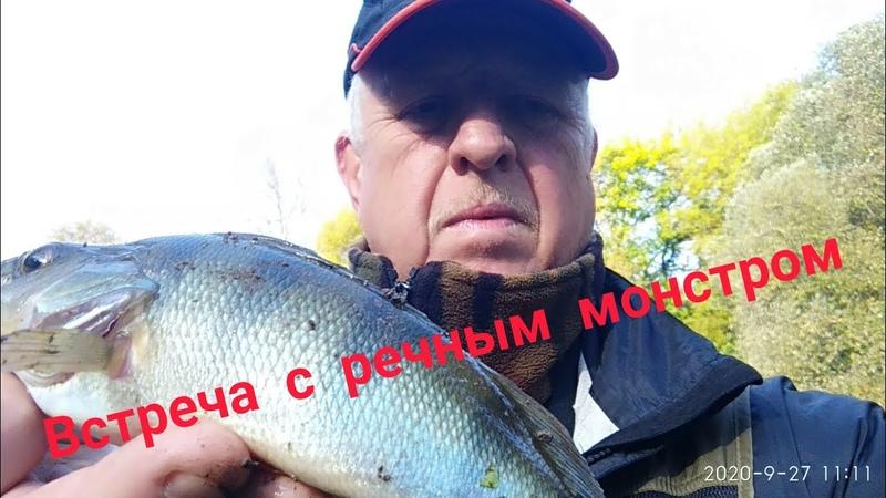 FAMILY FISHING 52 Встреча с речным монстром