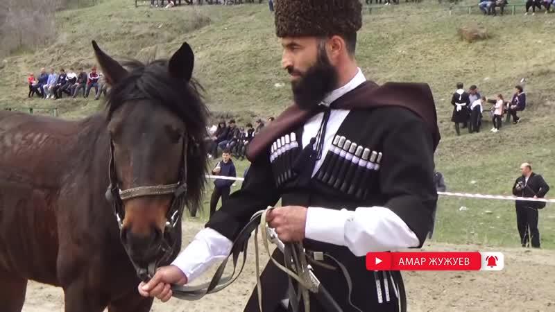 Вся правда о Кабардинской лошади (адыгэ ш) - скачки в КЧР