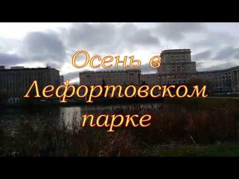 Лефортово осень 2019